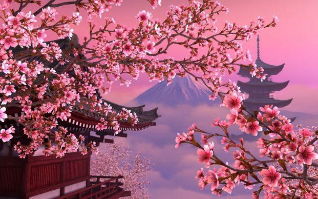 Тур в Японию