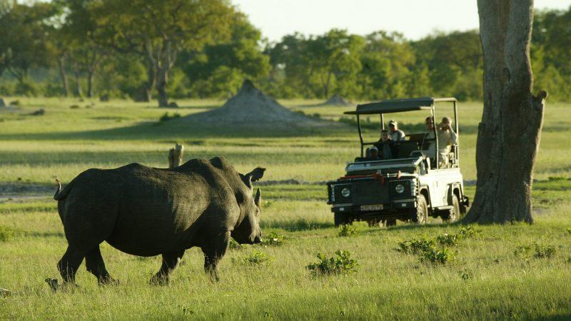 Тур в Зимбабве